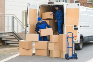 The all in one Adelaide removalists service