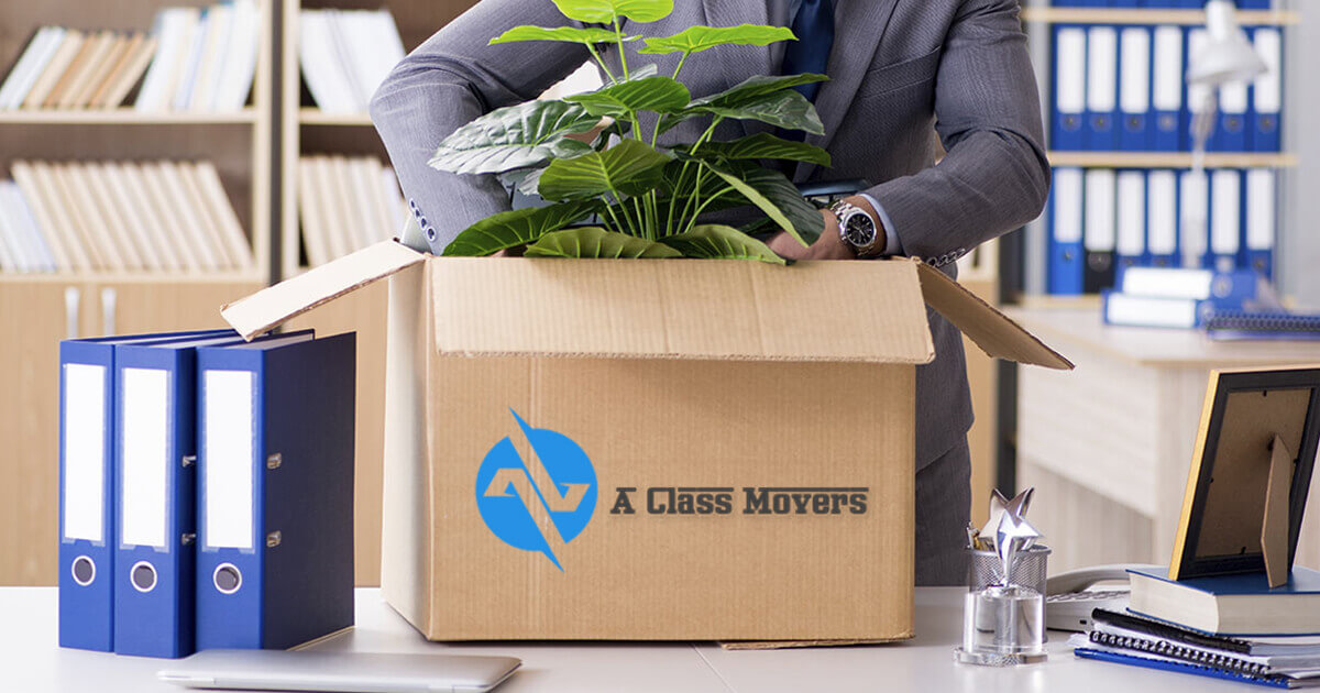 Office Removalists Croydon Park
